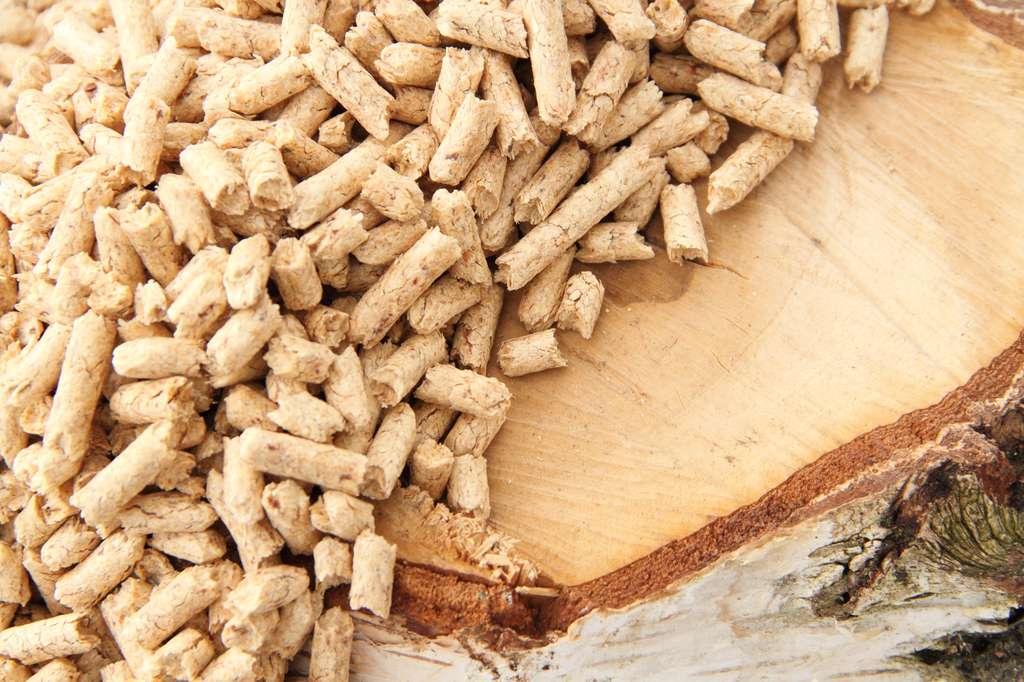 Fournisseurs de bois et granulés